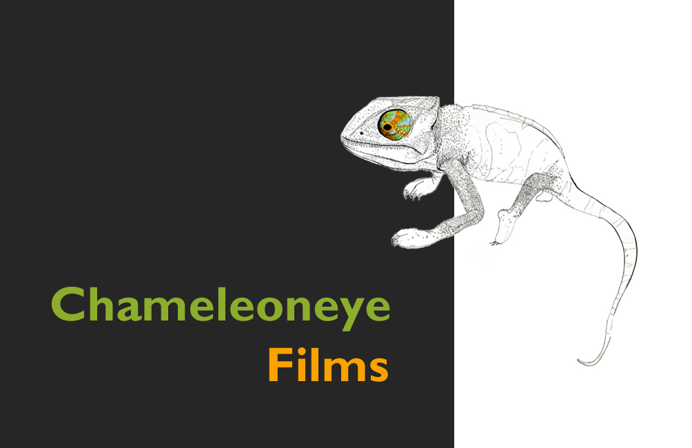 Chameleoneye Films - UK & Mozambique based production company