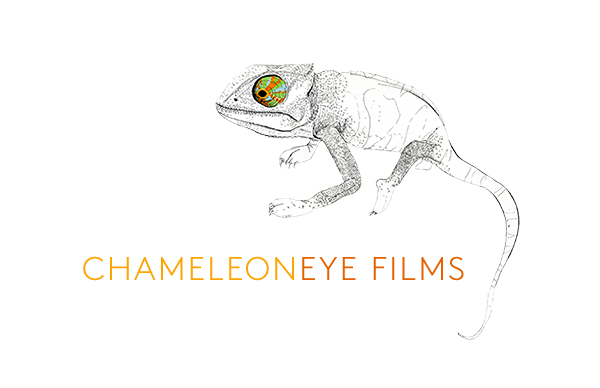 Chameleoneye Films